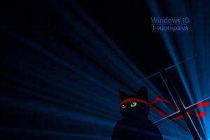 Windows_Insider_Anniversary-Ninjacat-2160x1440-fi-FI